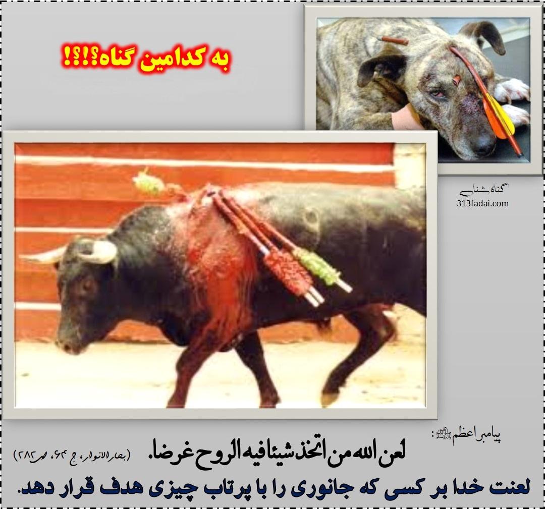 لعنت خدا بر هدف قرار دهنده حیوانات