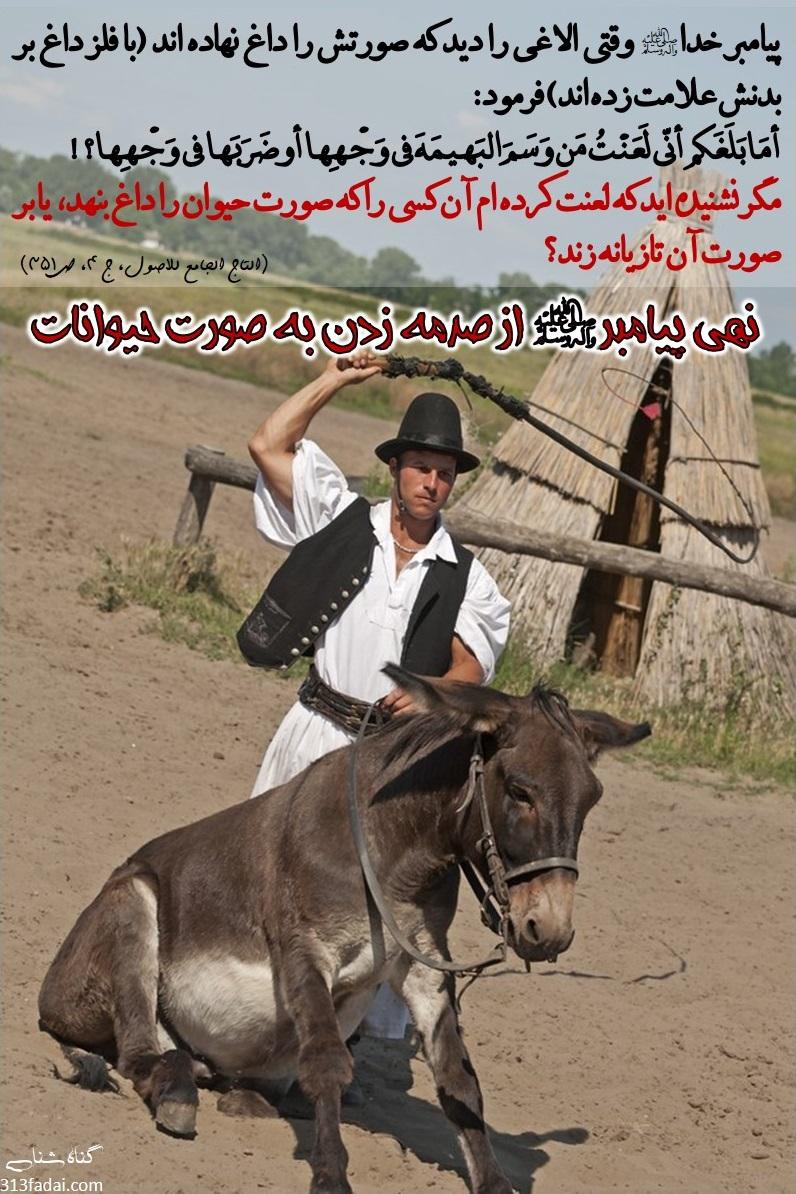 نهی پیامبر(ص) از صدمه زدن به صورت حیوانات