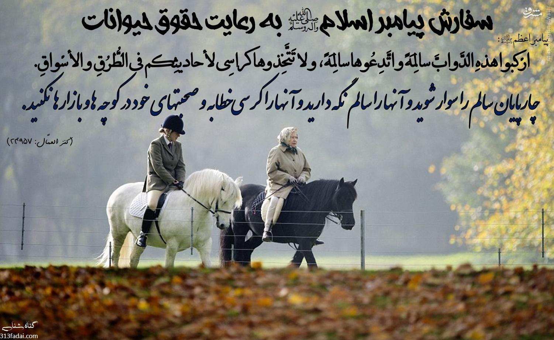 پیامبر اسلام به رعایت حقوق حیوانات سفارش پیامبر اسلام صلی الله علیه و آله به رعایت حقوق حیوانات